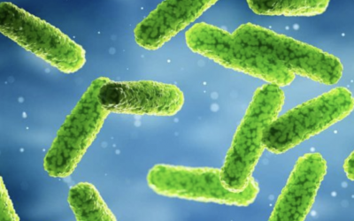 Preventing Legionella in Commercial Hot Water Supplies